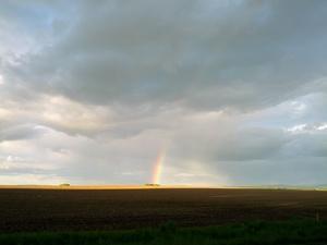 Regbog B in Regenbogen