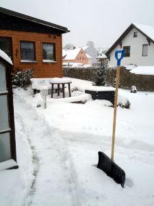 Spuren T in Spuren im Schnee